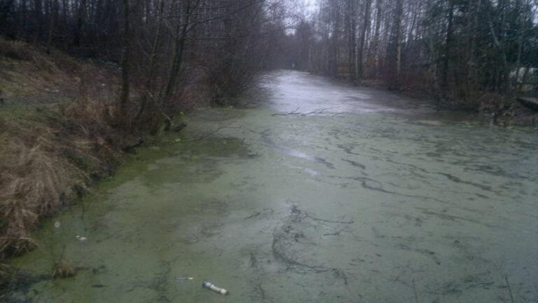 осушение водоема в СПб